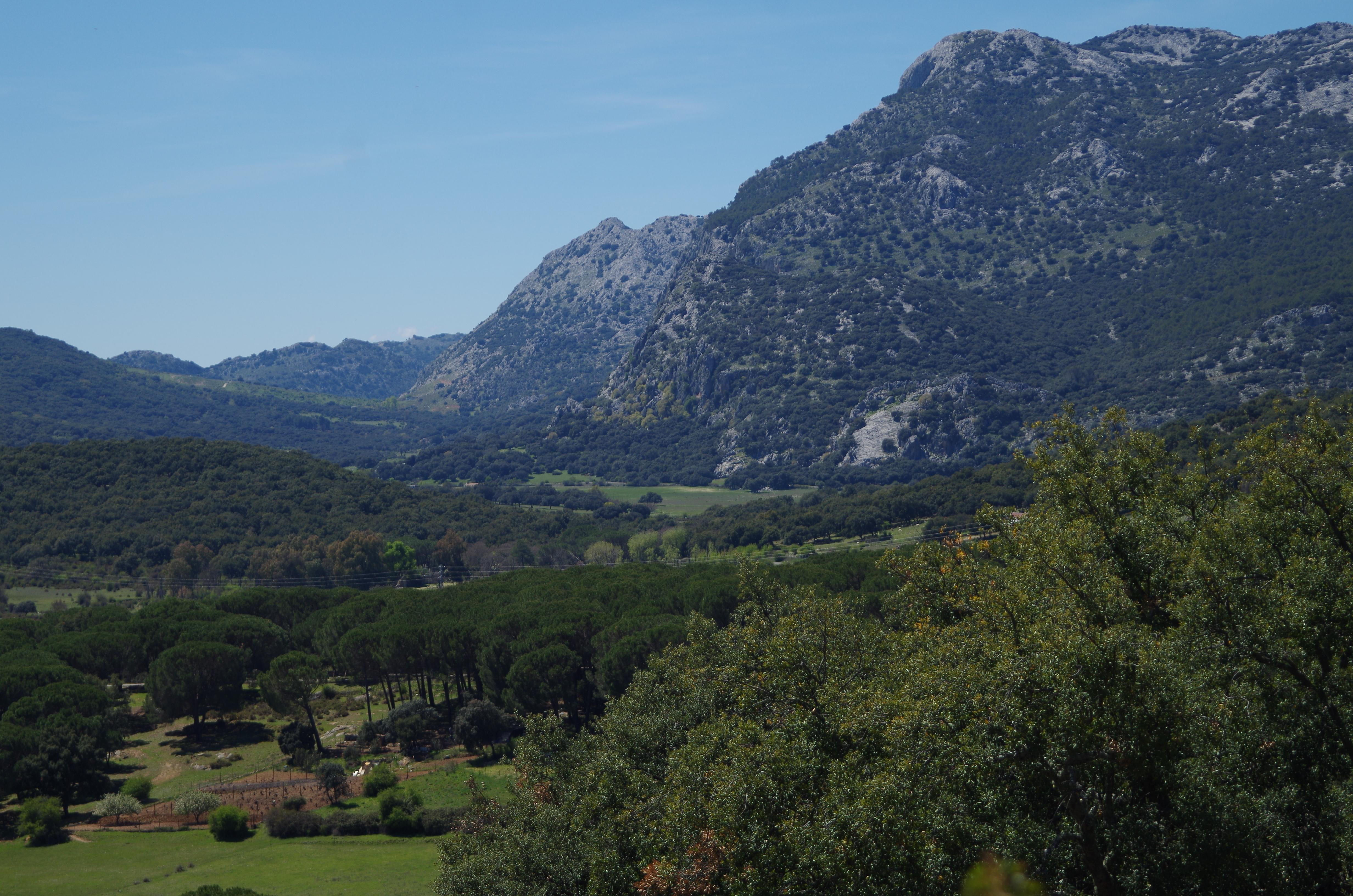 Sierra de Grazalema. Cádiz.