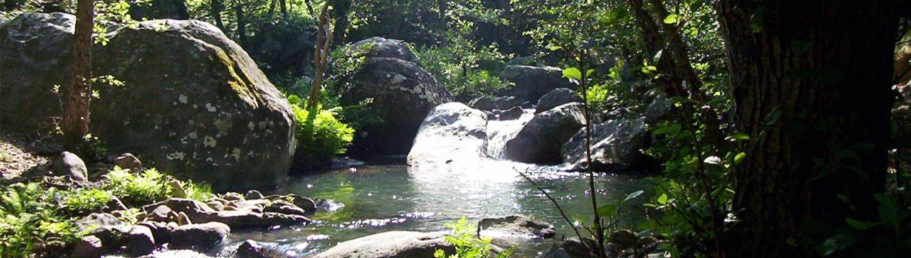 Cadiz-Parque-Natural-Los-Alcornocales-02