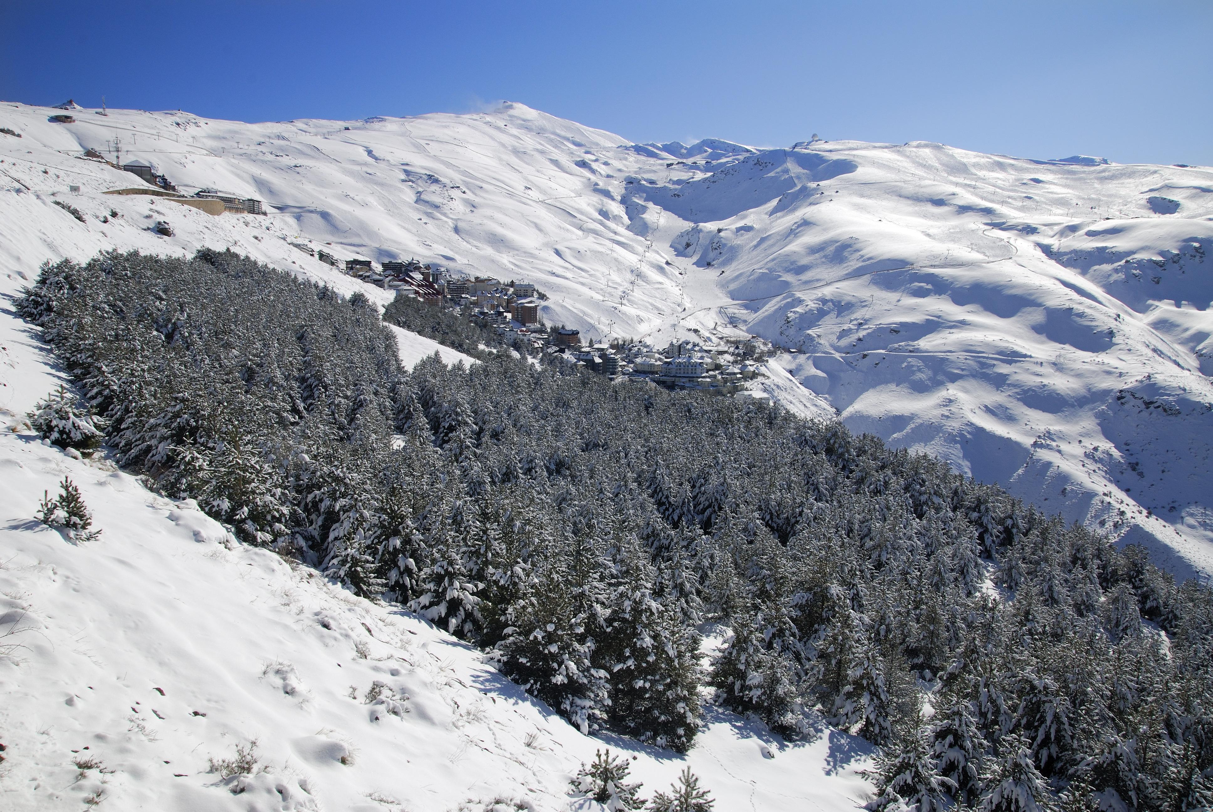 Parque Nacional de Sierra Nevada. Granada.